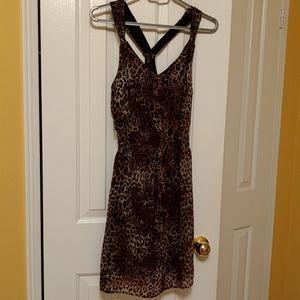 🆕 Leopard print chiffon dress - Dynamite Small